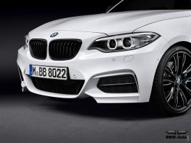 BMW M235i M Performance (28)